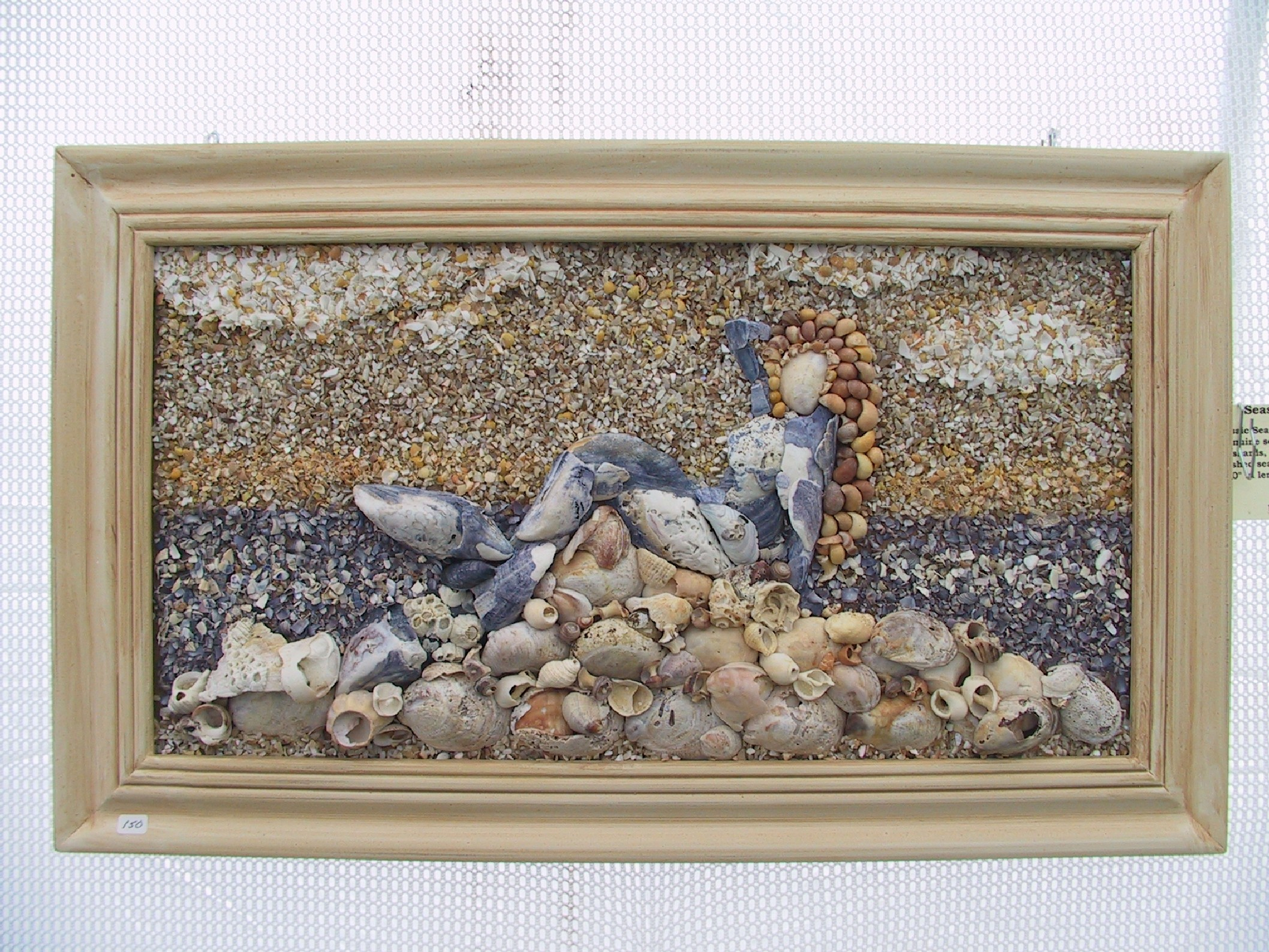 mussel-mermaid-framed